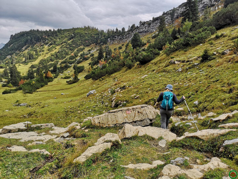 Tannheimer Tal – Auf zur Roßalpe