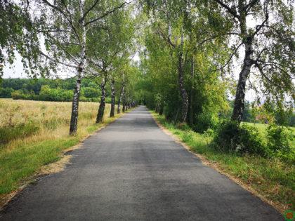 Saarland-Rundweg Etappe 03/20