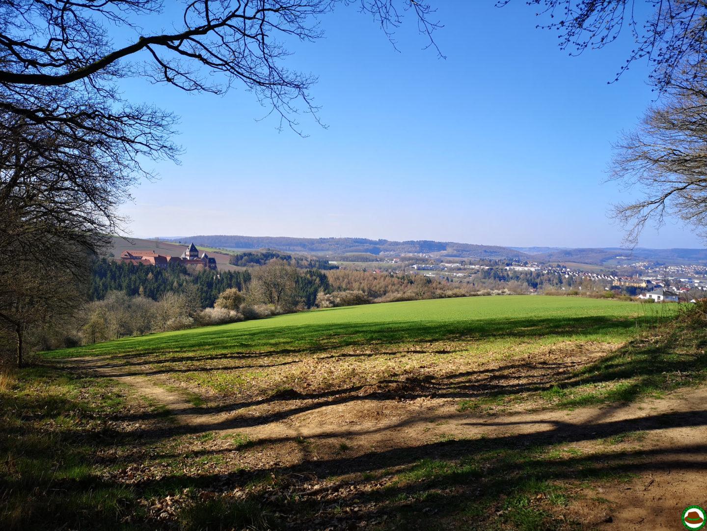 Premiumwanderweg Tiefenbach-Pfad