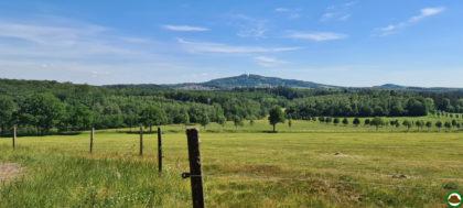 Panoramaweg Sankt Wendeler Land – Etappe 04/06
