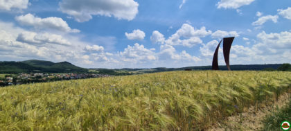 Panoramaweg Sankt Wendeler Land – Etappe 05/06